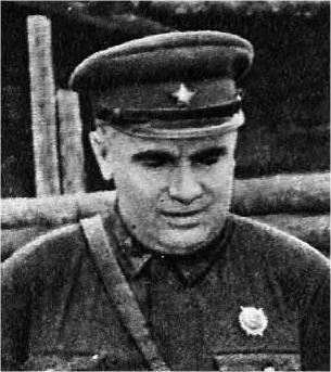Д.Е. Колесников