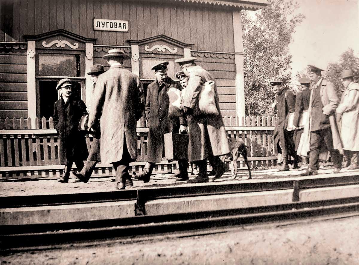 Платформа Луговая до революции. 1914-15